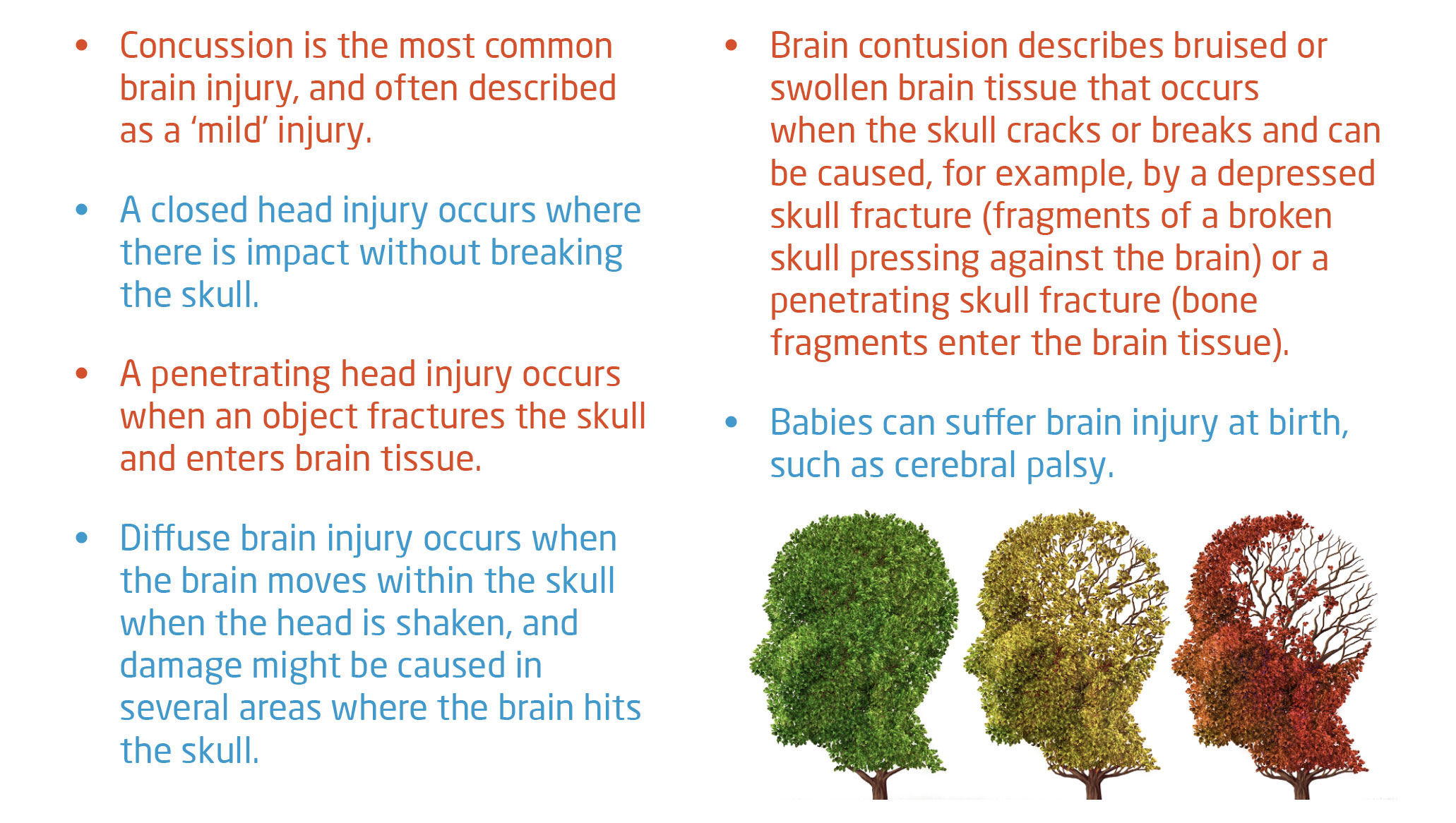 types of brain injuries v2